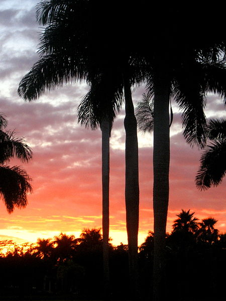 Weston, Florida - Sunset